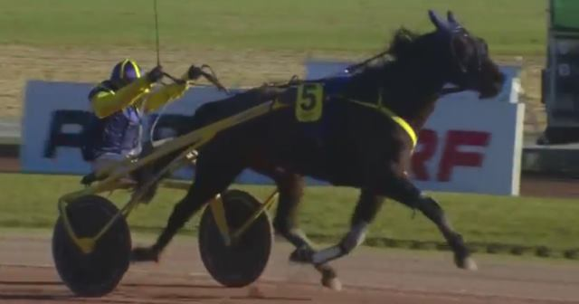 AERO KING (5 - Anthony BARRIER) gagnant de la 13ème étape du Grand National du Trot 2017 à MAUQUENCHY