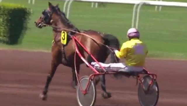 BEST BUISSONAY (Jérémy-Gaston VAN EECKHAUTE) gagnant de la 3ème étape du Grand National du Trot 2017 à LYON PARILLY