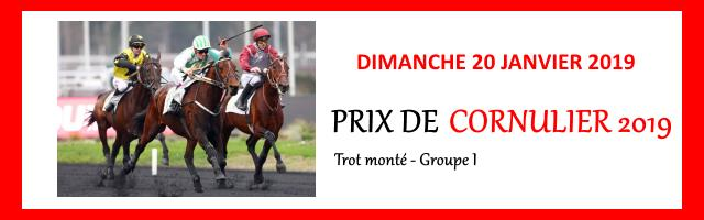 Calendrier Pmu 2019 Quinte.Prix De Cornulier 2019 Pmu Resultat Pmu Quinte Tierce