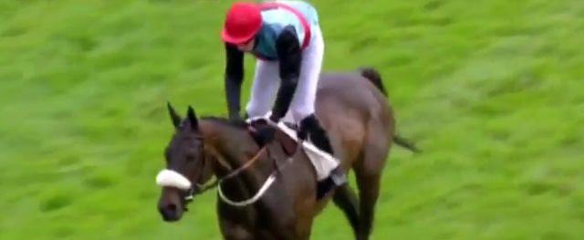 SO FRENCH gagnant du GRAND STEEPLE-CHASE DE PARIS 2016 à AUTEUIL